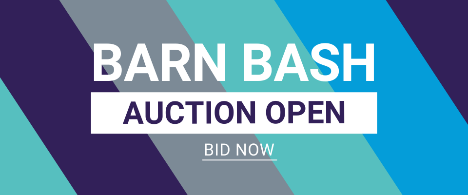 BARN BASH - AUCTION OPEN NOW!