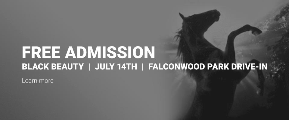 Join us for Black Beauty on July 14, 2021 at the Falconwood Park Drive-In!